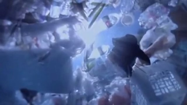 Plastic Paradise: The Great Pacific Garbage Patch Trailer